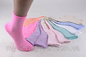 "ОПТОМ.Детские носки на девочку ""Фенна"" ХЛОПОК (FEC1005/M) | 12 пар, фото 2"