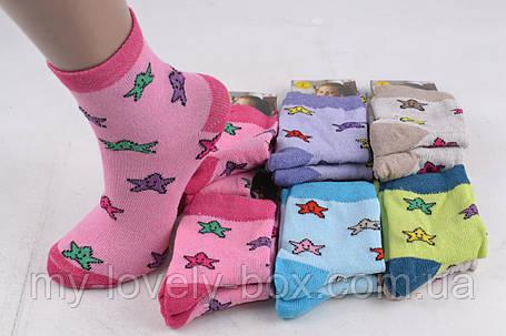 """ОПТОМ.Детские носки на девочку """"COTTON"""" (Арт. LC10)    12 пар, фото 2"""