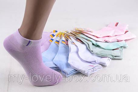 """ОПТОМ.Детские Носочки на девочку """"Алия"""" ХЛОПОК (ALC79/21-26)   12 пар, фото 2"""