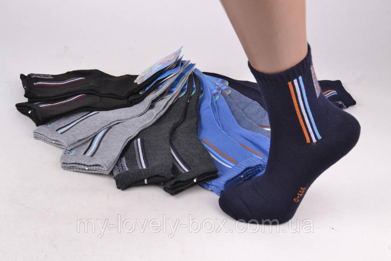 ОПТОМ.Детские носки на мальчика (Арт. C116/30-35) | 12 пар