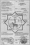 Махровая простынь - (евро) - Туркменистан, фото 2