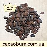 Какао боби Гана  сушені  1 кг, фото 2