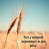 Топ 5 хвороб зернових в 2019 році