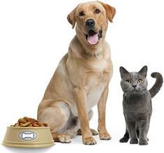 Корм для собак и кошек, аксессуары для животных
