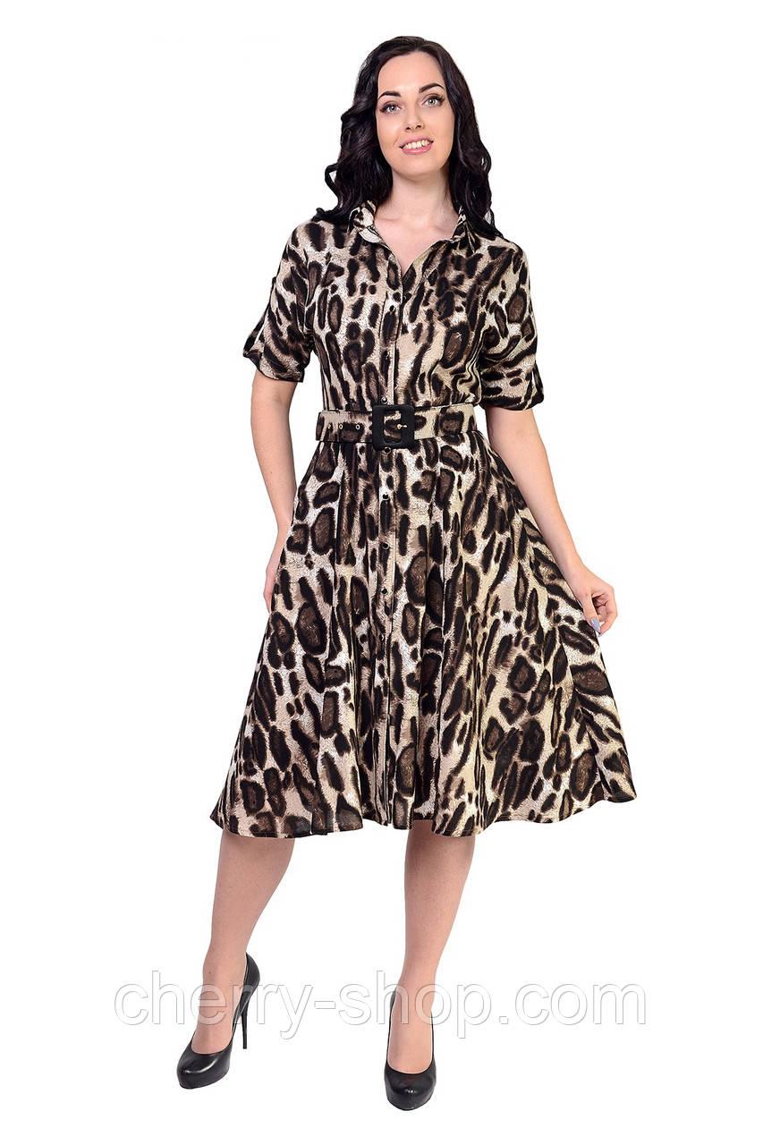 Платье в рубашечном стиле с классическим воротником
