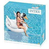 Надувной плотик Лебедь Intex 57557, фото 3