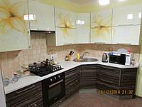 Кухня стеклянный верх низ шпон, фото 1