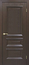 Двери Омис Сан Марко 1.2 ПГ.  Полотно, ПВХ, фото 2