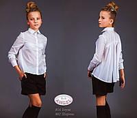 Блуза Baby Angel 814 девочка хлопок