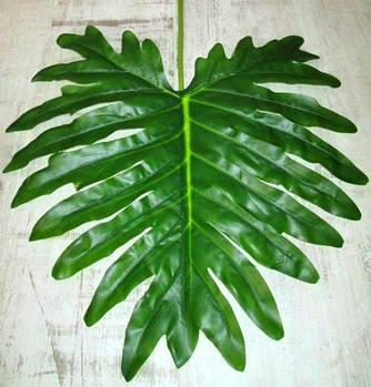 Лист круглый латексный 105 см, Пальма