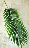 Лист латексный 100 см, Пальма