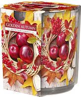 Свеча ароматизированная в стекле Bispol Золотая осень 7,8 см (sn72s-03)