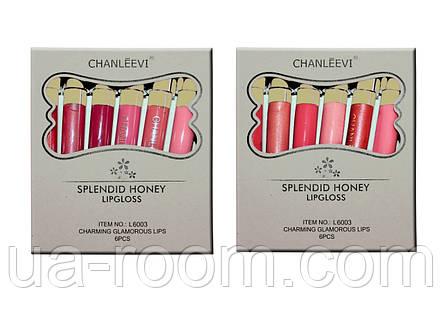 Матовый блеск для губ Chanleevi L6003, фото 2