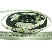 Светодиодная лента 24 вольт 8.6Вт 818лм 2835-120-IP33-NW-8-24 RN08C0TC-B нейтрально белая  Рішанг 8232