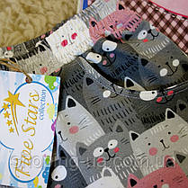 Детские шорты котики Five Stars HD0244-122p, фото 3