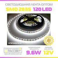 Светодиодная лента 12В оптом 120 LED/m SMD2835 IP20 (для подсветки) 9,6 Вт/м