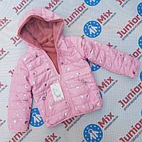 Детские осенние куртки для  девочек оптом GRACE. Венгрия