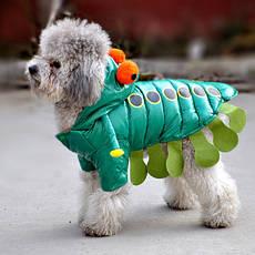 Куртки, комбинезоны и дождевики для животных