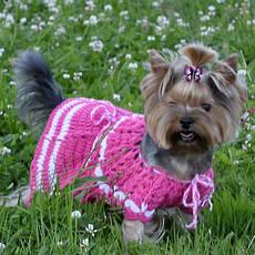 Платья, брюки и костюмы для животных