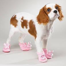 Обувь и носочки для животных