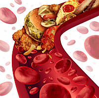 Холестерин  за та проти...