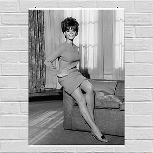 Постер Клаудия Кардинале, Claudia Cardinale, ретрофото. Размер 60x43см (A2). Глянцевая бумага