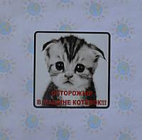 Наклейка на авто В машине котёнок