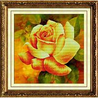 """Ароматная роза (2)"" Набор для рисования камнями"