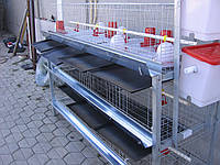 Клетки для 120 бройлеров, фото 1