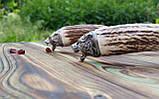 Комплект шумовка/половник  из нержавеющей стали с рукоятью из рога. Ручная работа. Шахрихан/Узбекистан, фото 3