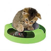 Іграшка для котів Злови мишку (когтеточка) Catch the mouse