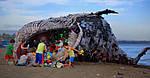 Загрязнение пластмассами - серьезная международная проблема!