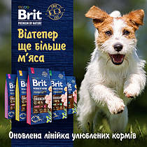 Brit Premium (Czech Republic) /Брит Премиум (Чехия)