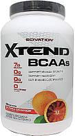 Аминокислоты ВСAA XTEND 1228 g Вкус : blood orange