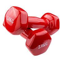 Гантели для фитнеса 2кг 80040-V2