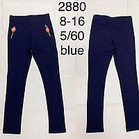 Подростковые брюки для девочек  синего цвета  оптом F&D