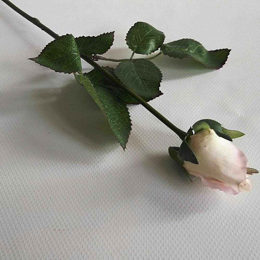 Роза латексная закрытый бутон нежно-розовая