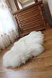 Ковер натуральный белый из 2-х овечьих шкур 2в1, фото 5