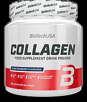 BioTech Collagen 300 g (Black Raspberry)