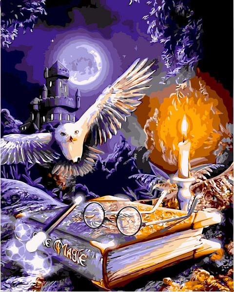 Картина по номерам Гарри Поттер Сова и книга , 40x50 см., Babylon