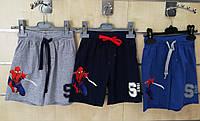 Трикотажные шорты для мальчиков Spider Man 3-8 лет