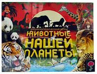 Игра Danko Toys большая настольная '' Животные нашей планеты ''