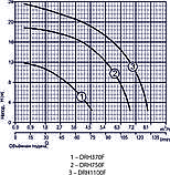 Дренажный насос Rudes DRH 750F 48134, фото 2