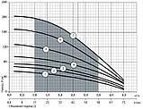Скважинный насос Насосы+Оборудование 100SWS2-55-0,45 + муфта 10070, фото 2