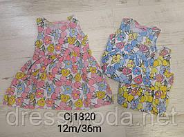 Сукня для дівчаток Sincere 12-36 міс.