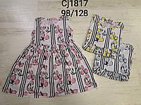 Платье для девочек оптом, Sincere, 98-128 см, арт. CJ-1817