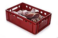 Полимерные ящики для мясных и рыбных изделий