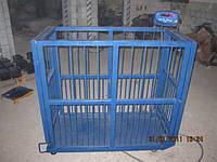 Весы для животных 600 кг, фото 1