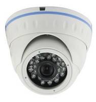 HD-СVI вандалоустойчивая видеокамера Master CAM IRVD-CV200 f=3.6mm CMOS 2Мп ИК 20м
