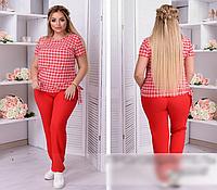Костюм брючный с блузкой в клетку, красный  с 50-62 размер, фото 1